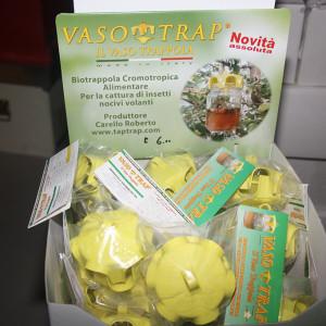 Vaso-trap--trappola-per-vespe,calabroni,-lumache