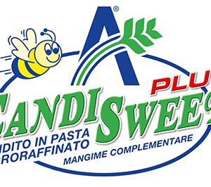 logo_candisweet_plus